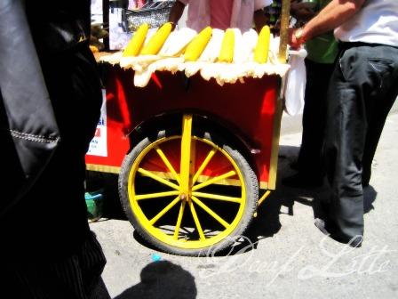 Türkiye tatili 2010 856
