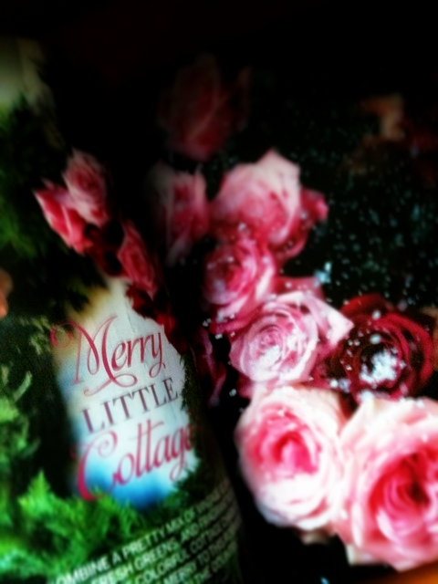 Merry little